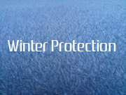 Winter Protection